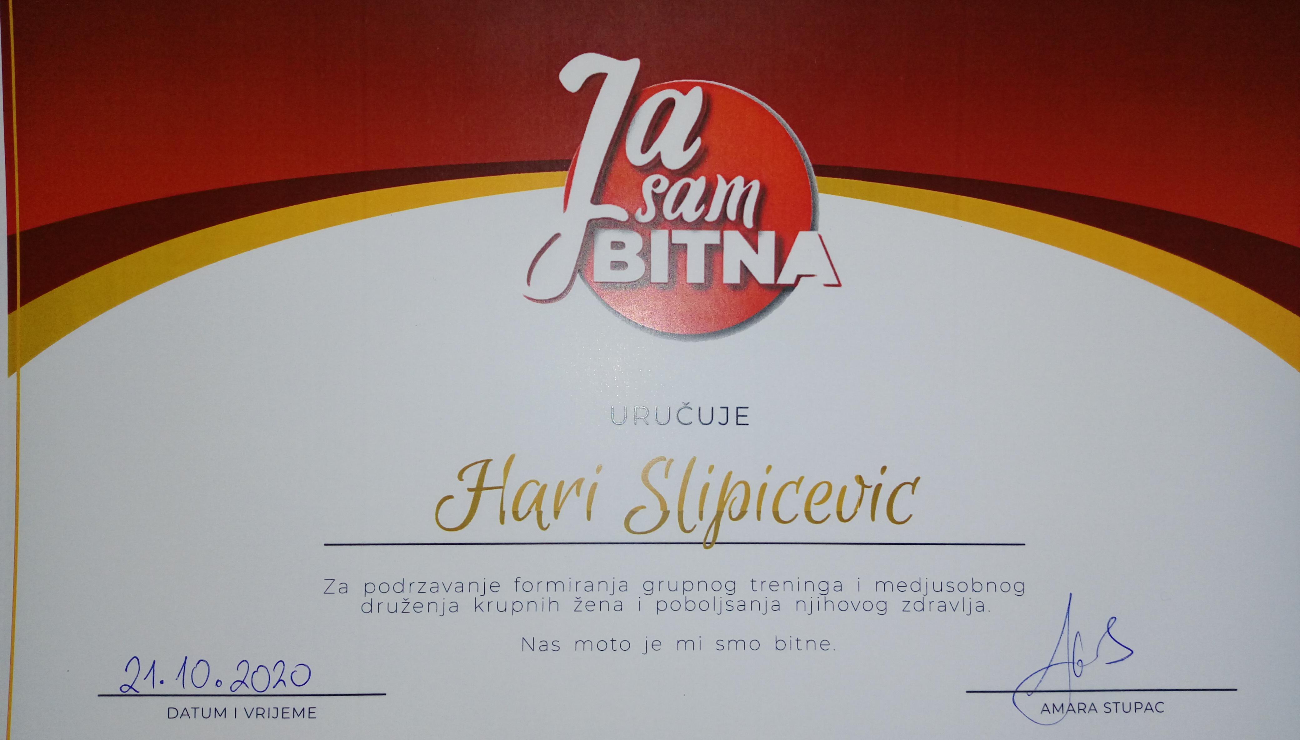 Ja-sam-bitna-Hari-Slipicevic.jpg